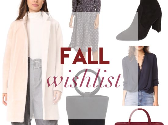 fall 2017 trend wishlist