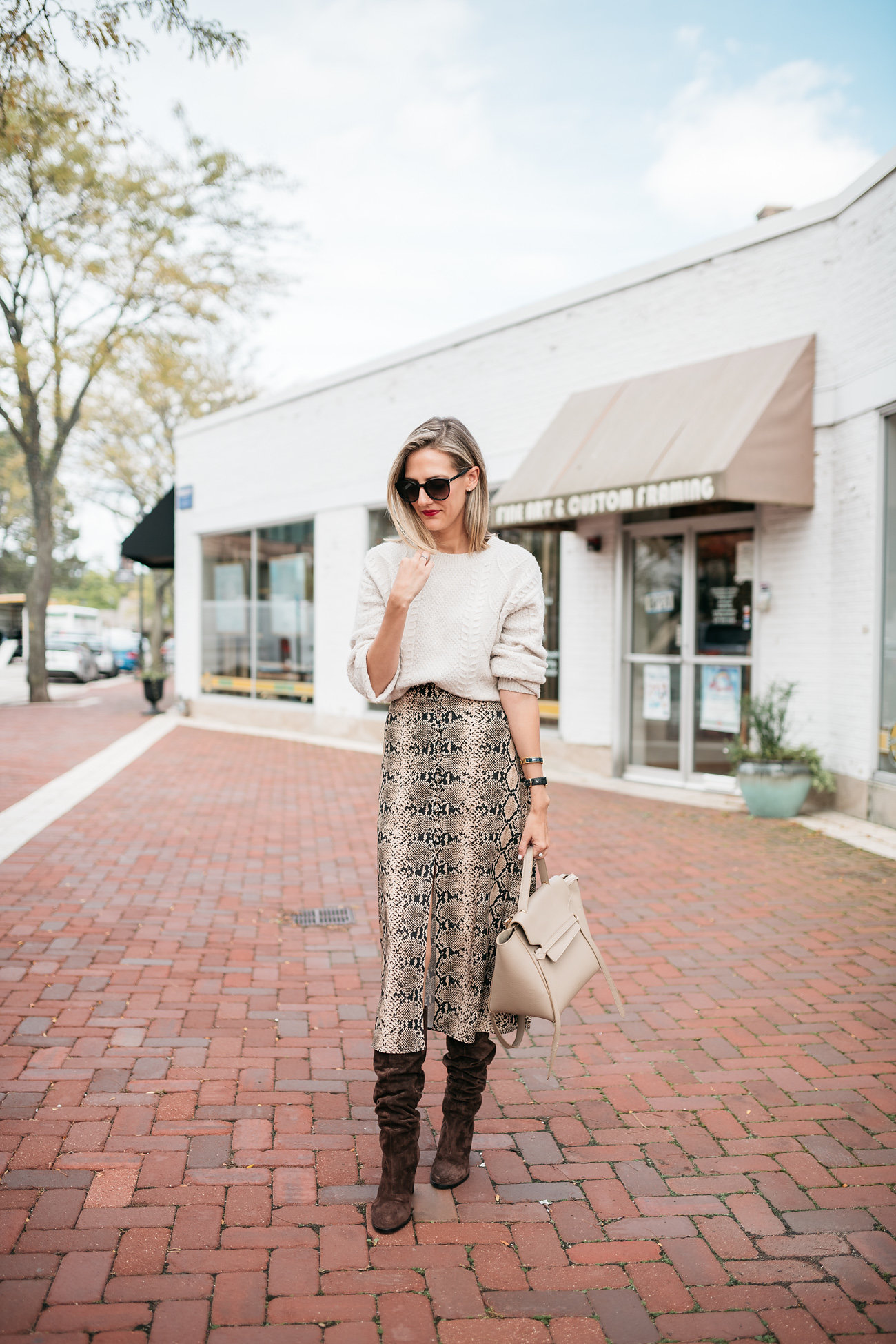 snakeskin print skirt